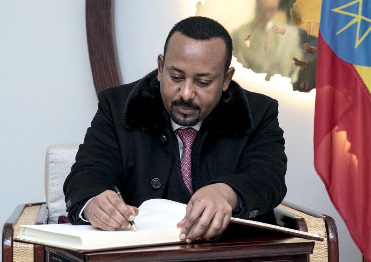 La stabilité de la Corne de l'Afrique menacée par le spectre d'une guerre civile en Ethiopie